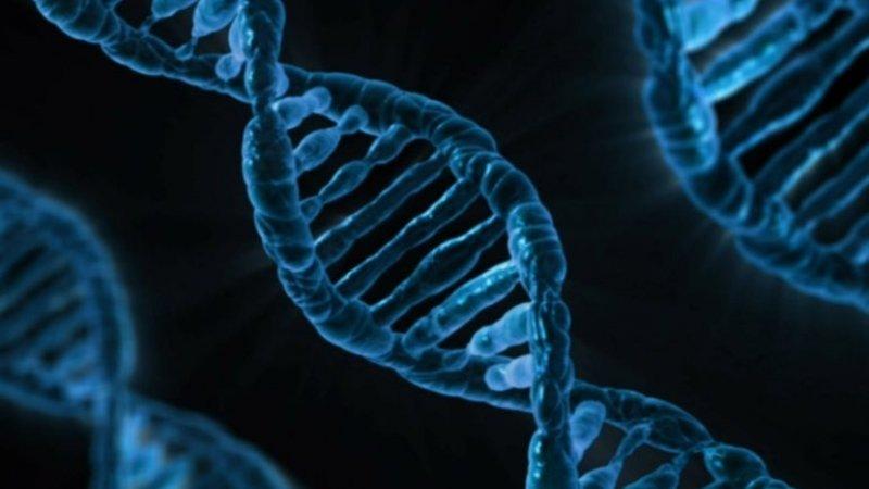 Il ruolo della scienza. La prospettiva cattolica.