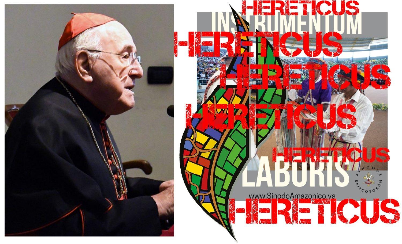 SER Cardinal Brandmüller accusa di eresia e apostasia il Sinodo vaticano sull'Amazzonia